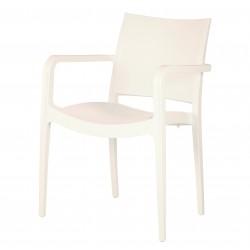 Delta Plastic Armchair